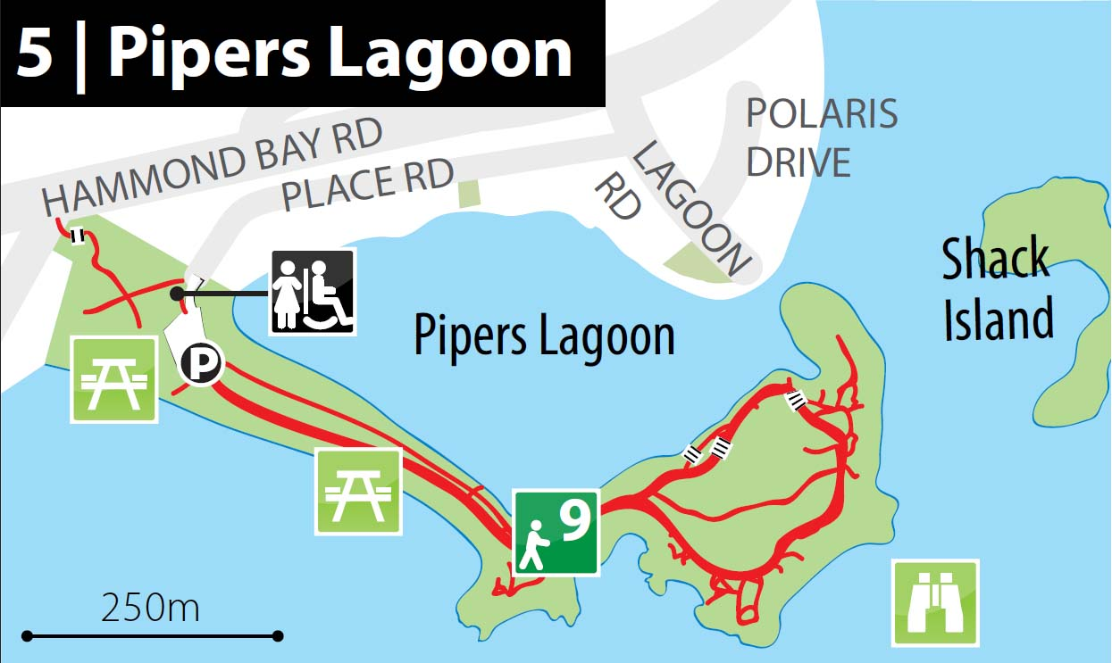 Pipers Lagoon park.jpg